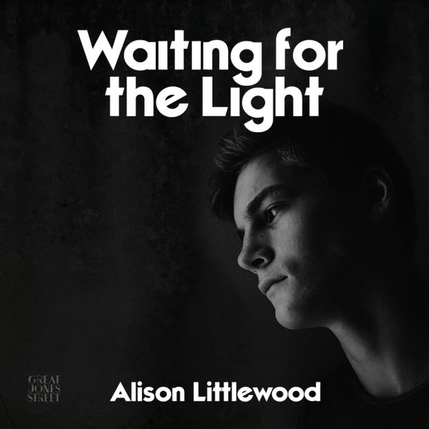 waiting-for-the-light-alison-littlewood_v1aa