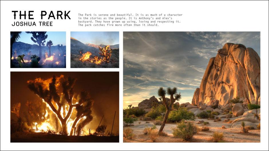 Joshua Tree national park on fire